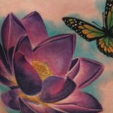 cover up lotus